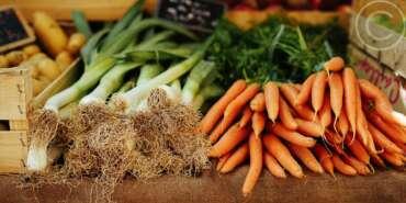 Simple Solutions to Avoid Harmful Toxins in Food